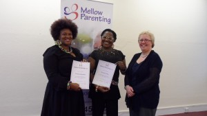 Mellow Parenting Practitioners