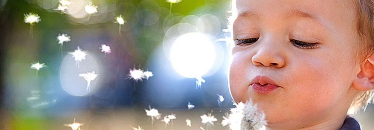 mellow parenting boy blowing leaves on a dandelion